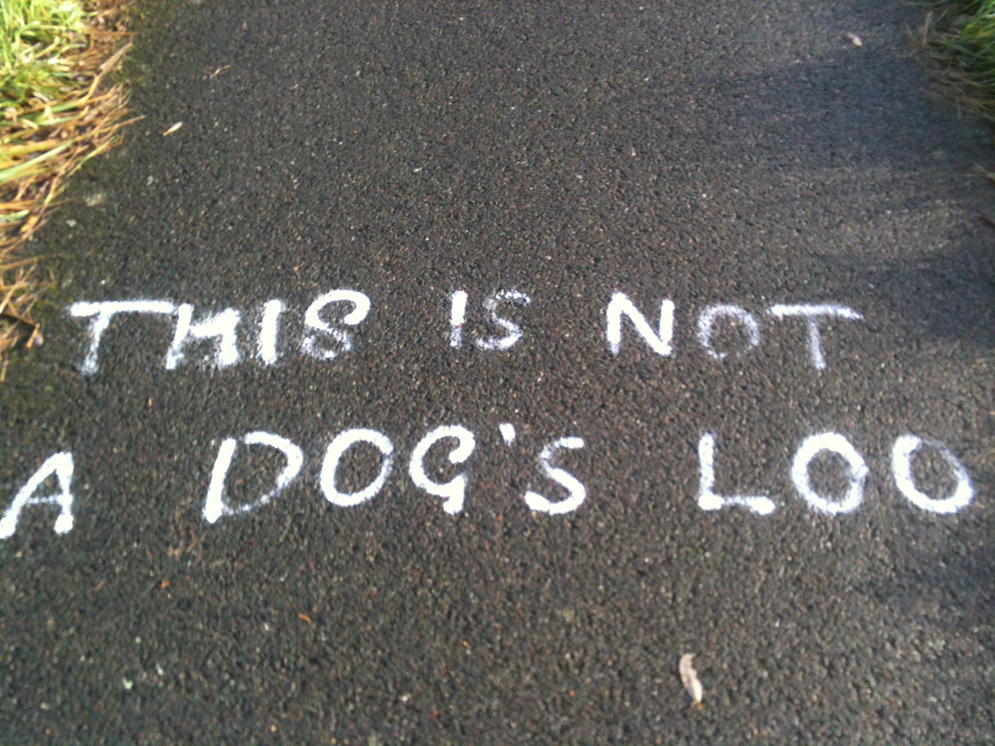 This is Not a Dog's Loo message found on Cycleway 23 IOW Photo by Philip Bell